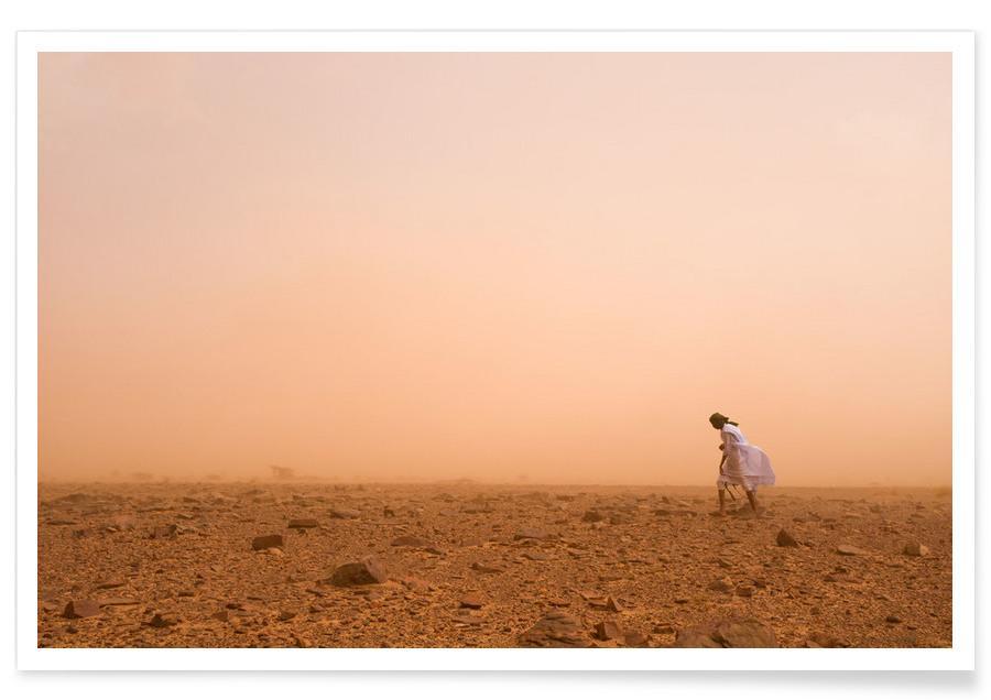 Wüsten, Camels Sahara -Poster