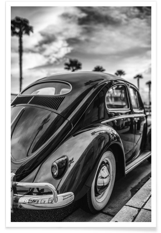 Schwarz & Weiß, Autos, Palm Tree Allley -Poster