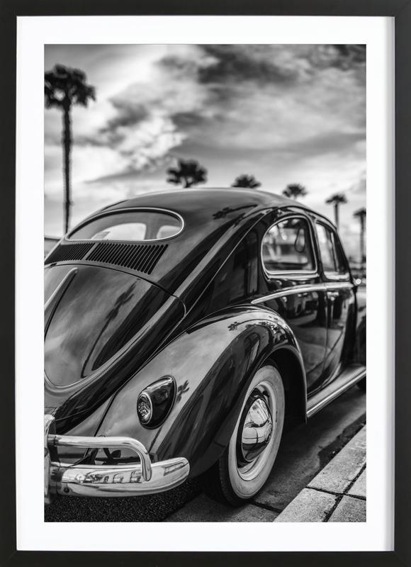 Palm Tree Allley Framed Print