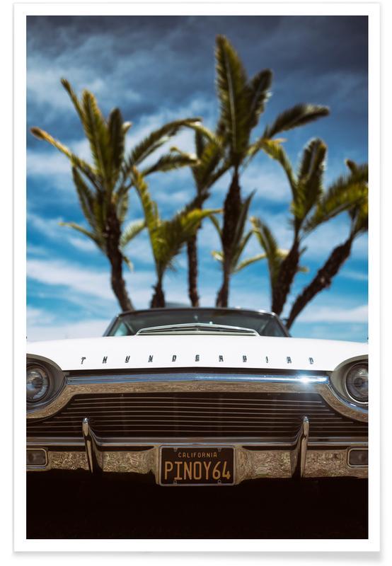 Tropic Thunderbird affiche