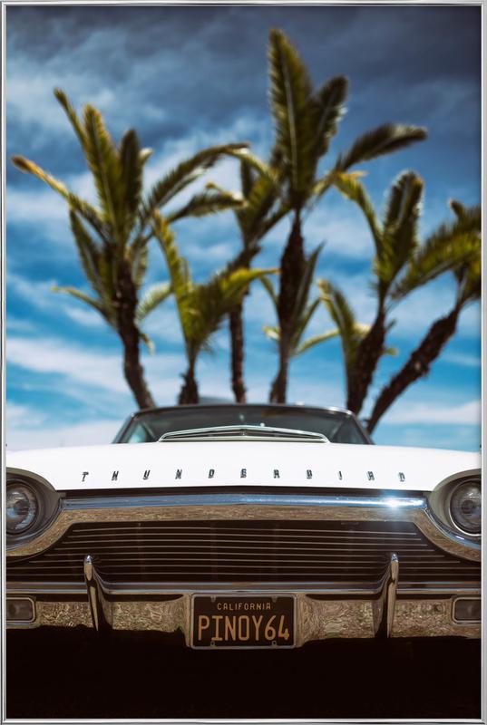 Tropic Thunderbird affiche sous cadre en aluminium