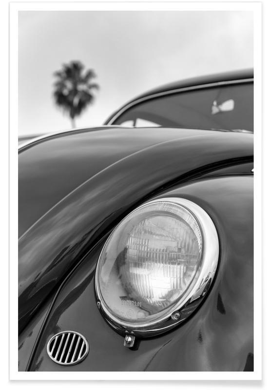 California Beetle Poster
