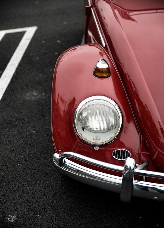 Red Beetle Canvas Print