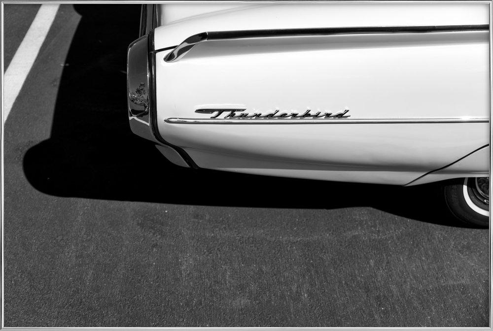 Monochrome Thunderbird -Poster im Alurahmen