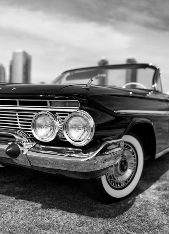 San Diego Impala -Leinwandbild