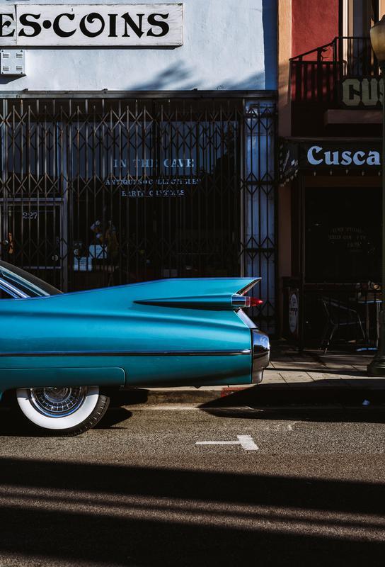 Turquoise Fins Aluminium Print