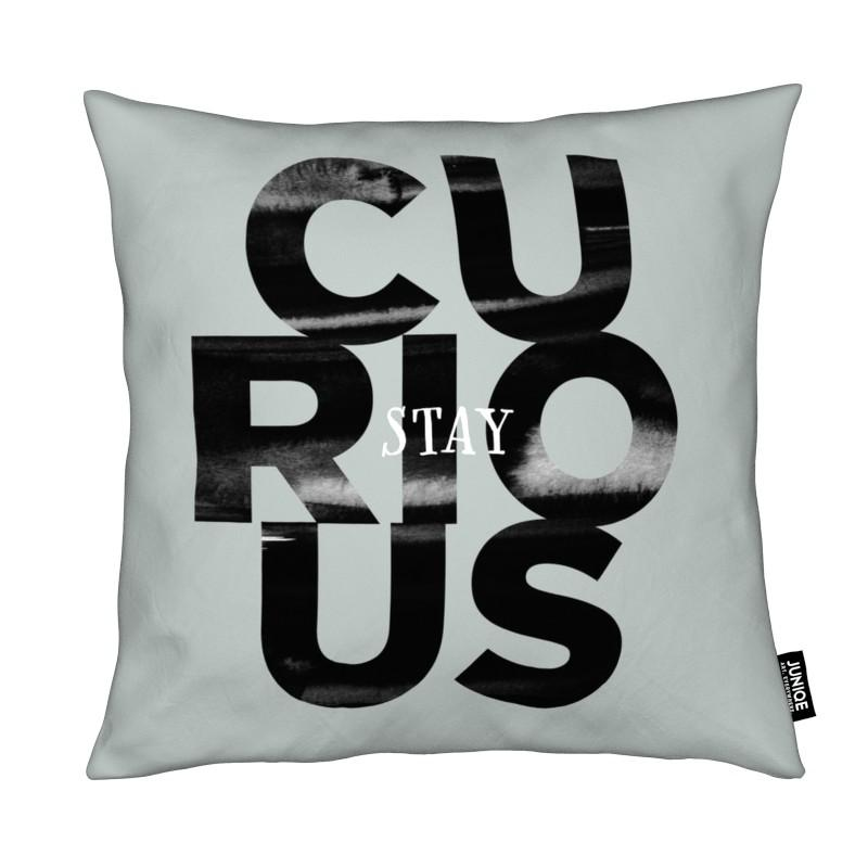 Motivation, Citations et slogans, Stay Curious coussin