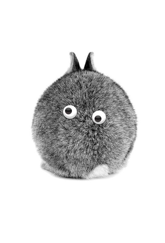 Bunny Eyes tableau en verre