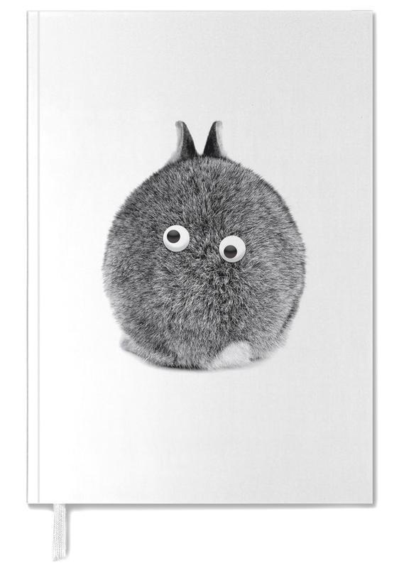 Lapins, Bunny Eyes agenda