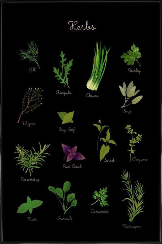 Herbs Framed Poster