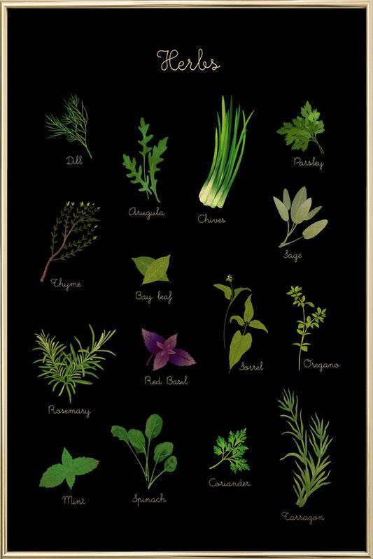 Herbs Poster in Aluminium Frame