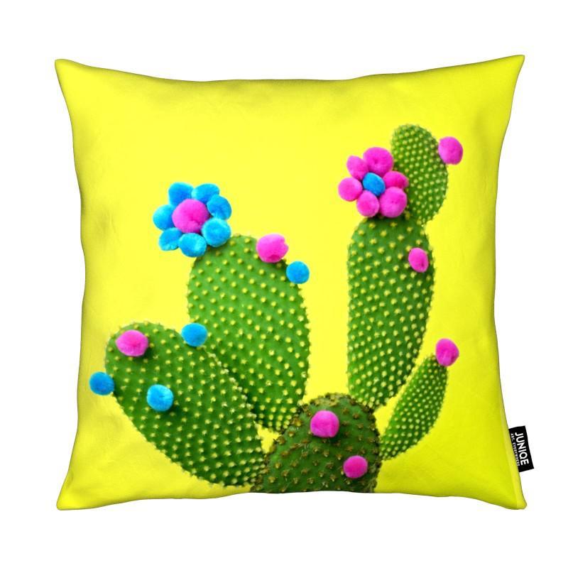 Cacti, Sunshine in the Desert