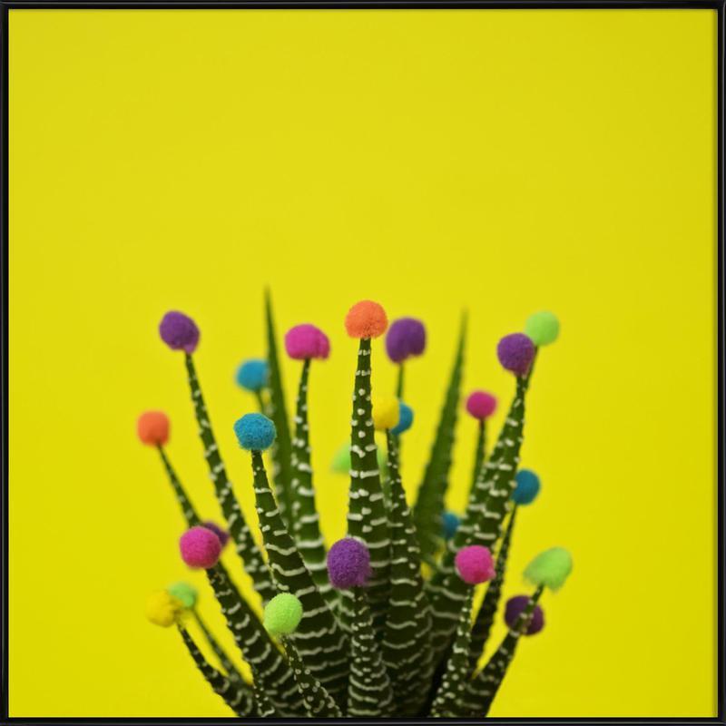 Haworthia in Bloom Framed Poster