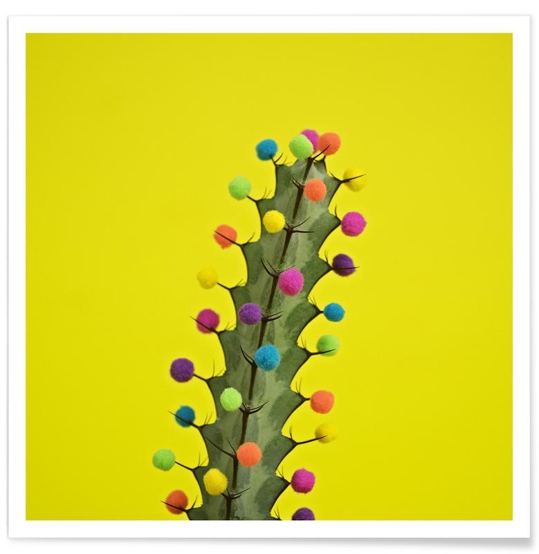 Verjaardagen, Cactussen, Send in the Clowns poster