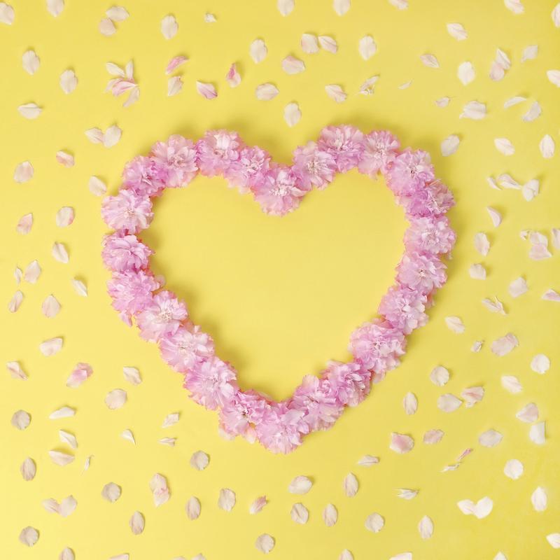Cherry Blossom Heart -Leinwandbild