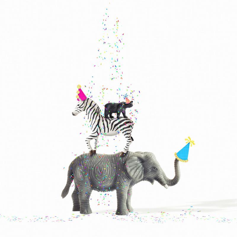 Party Animals acrylglas print