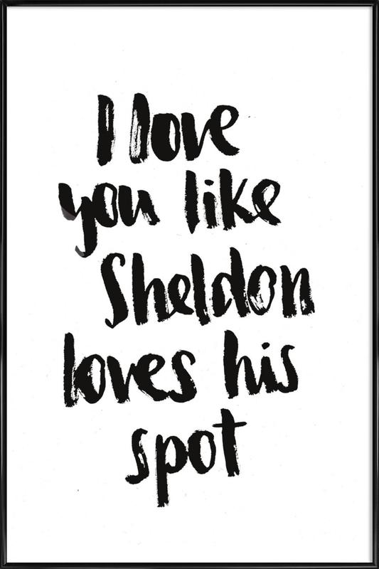 Sheldon -Bild mit Kunststoffrahmen