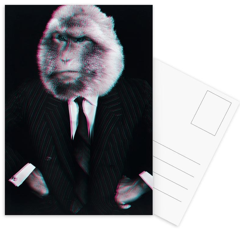 Monkey Postcard Set