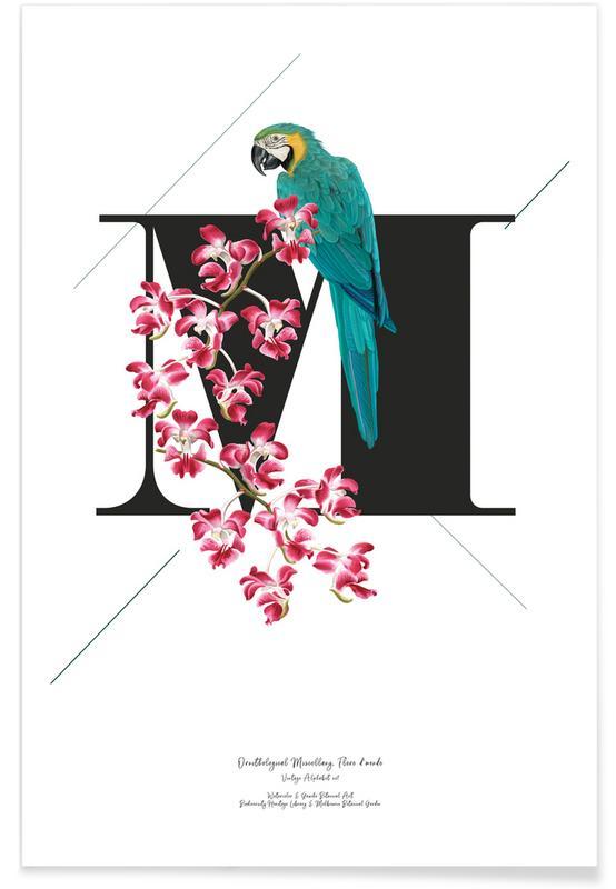 Alphabet & Buchstaben, Botanical Alphabet - M -Poster