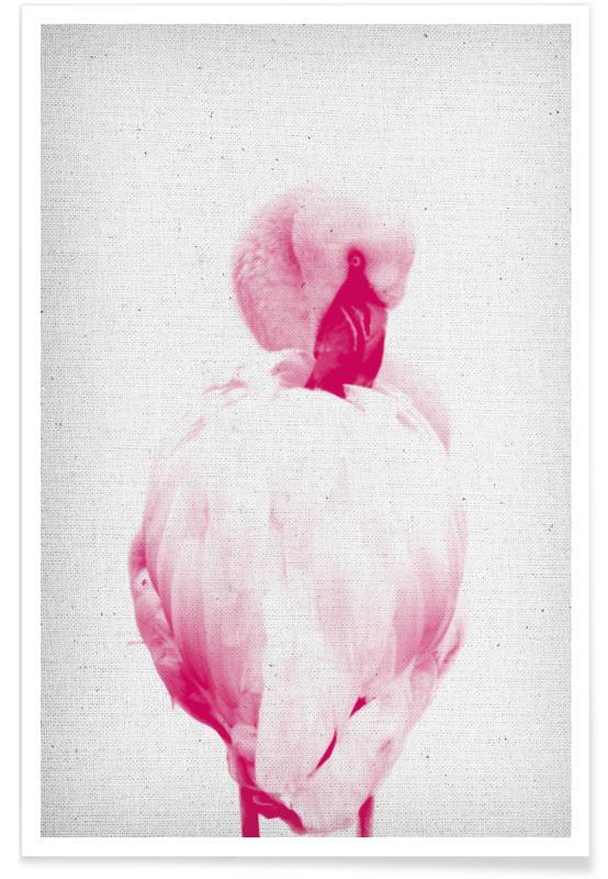 Flamingos, Flamingo 02 -Poster