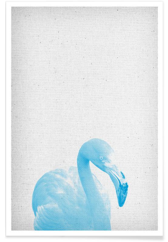 Flamingos, Flamingo 04 -Poster