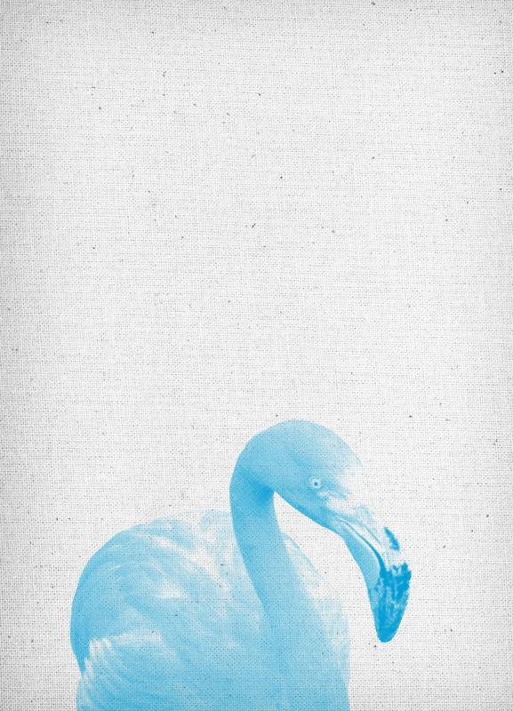 Flamingo 04 canvas doek