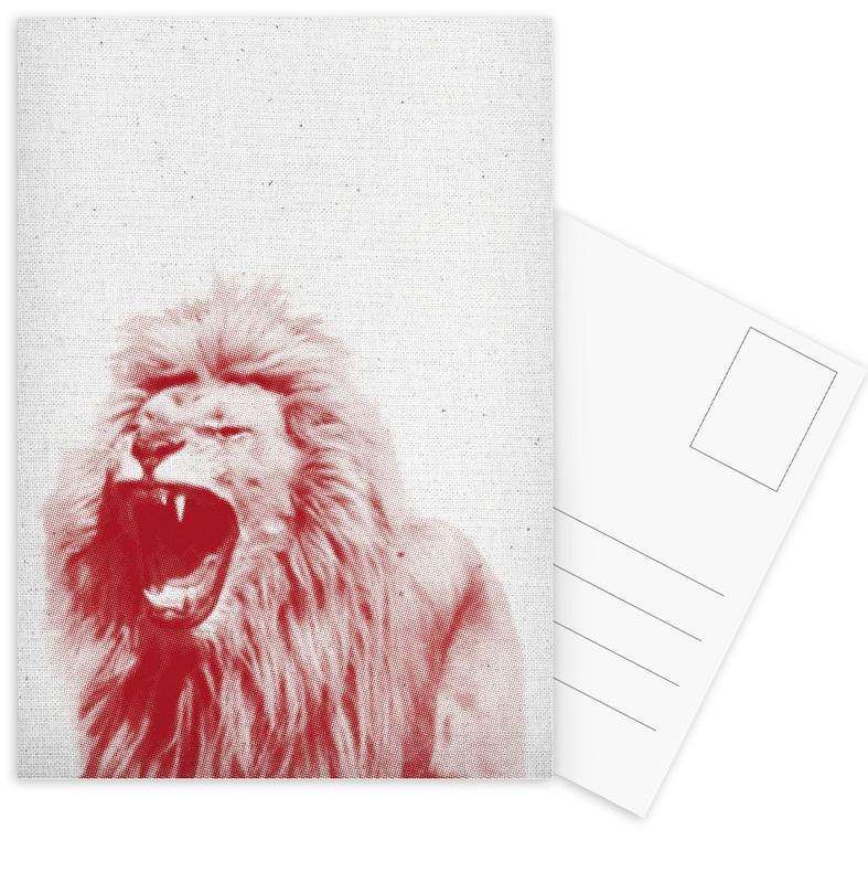 Löwen, Lion -Postkartenset