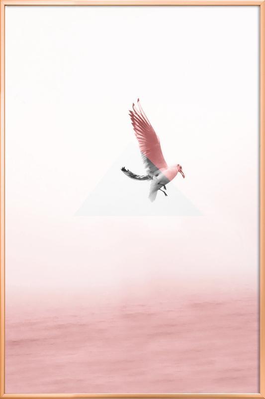 Möve -Poster im Alurahmen