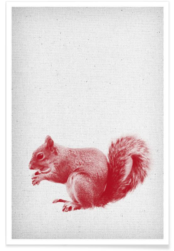 Børneværelse & kunst for børn, Egern, Squirrel Plakat