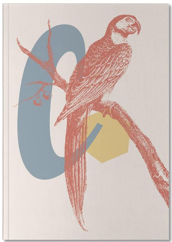 Alphabet & Letters, Retro, Parrots, C Notebook