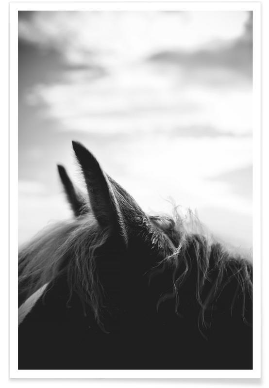 Sort & hvidt, Heste, A Horse of Course No.2 Plakat