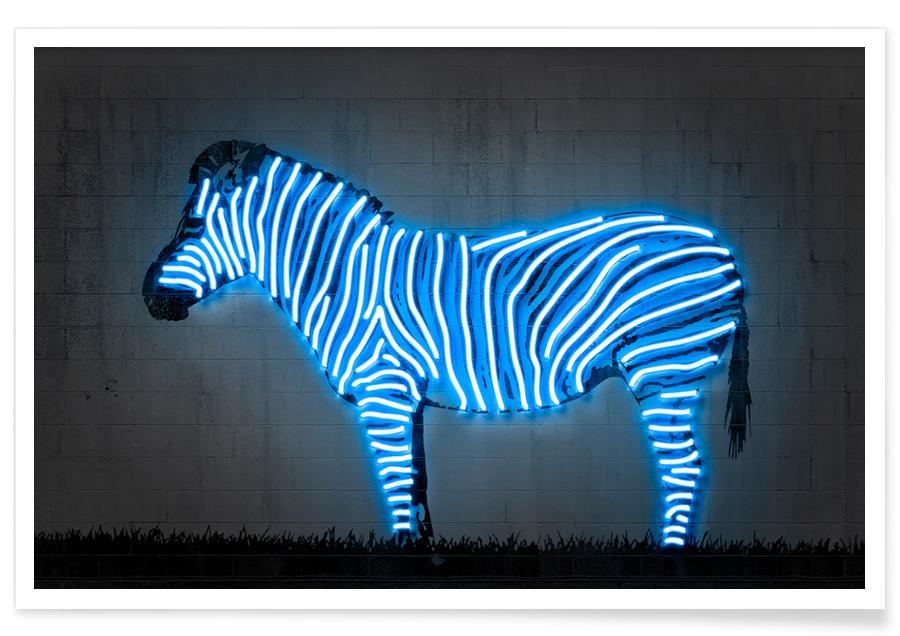 Zebra's, Zebra poster