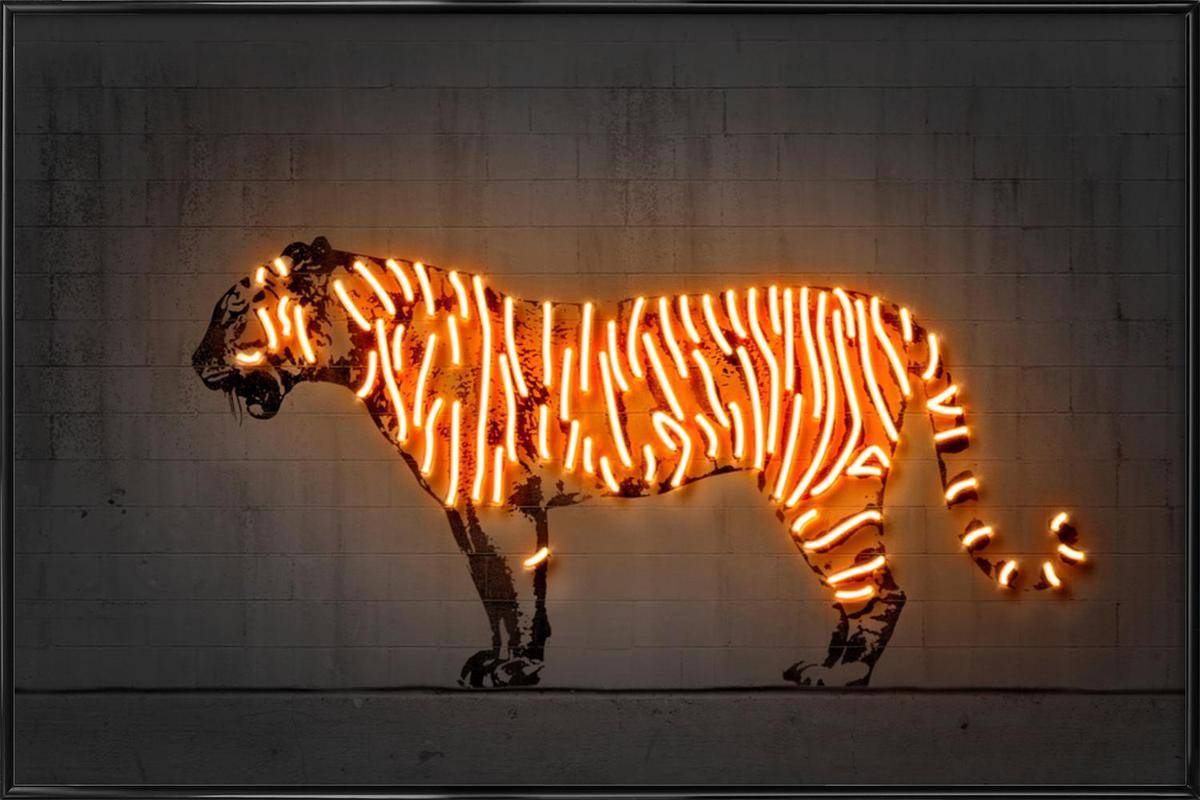 Tiger Framed Poster