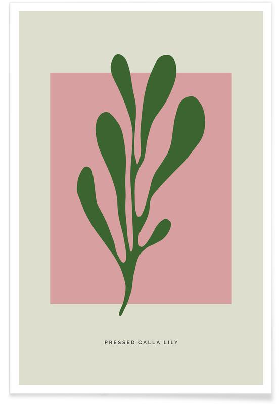 Lilien, Pressed Calla Lily -Poster