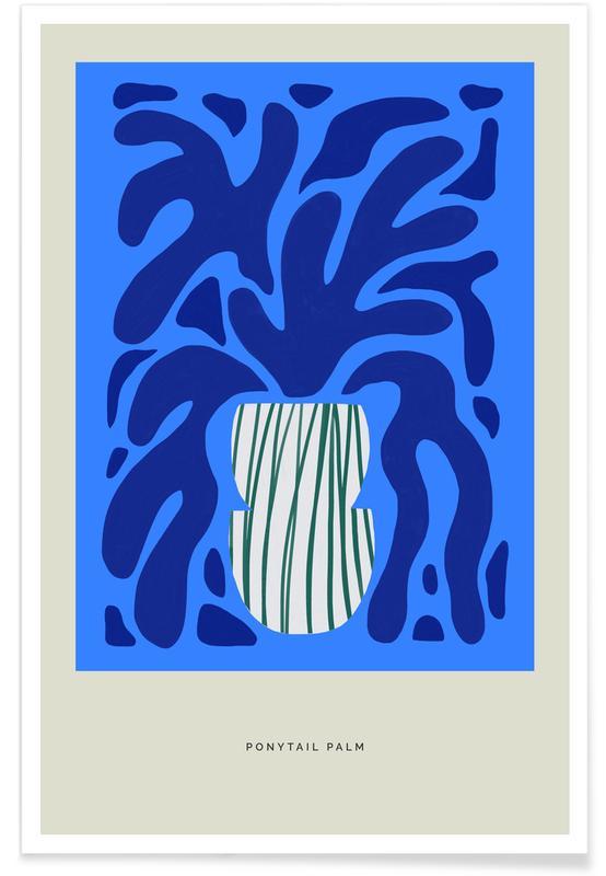 , Ponytail Palm affiche