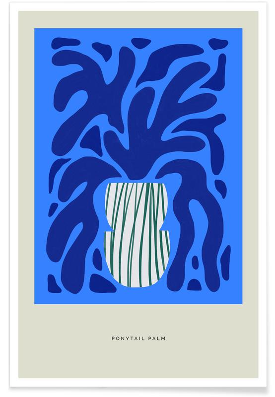 , Ponytail Palm Poster