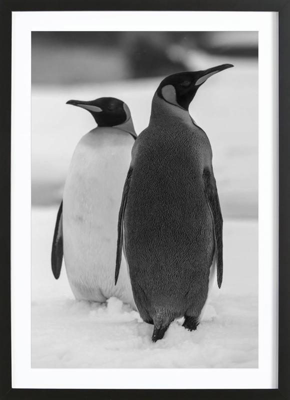 The Penguins Poster i träram