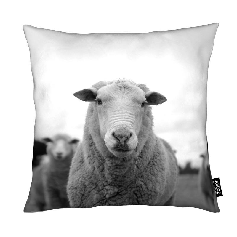 Noir & blanc, Moutons, The Sheep coussin