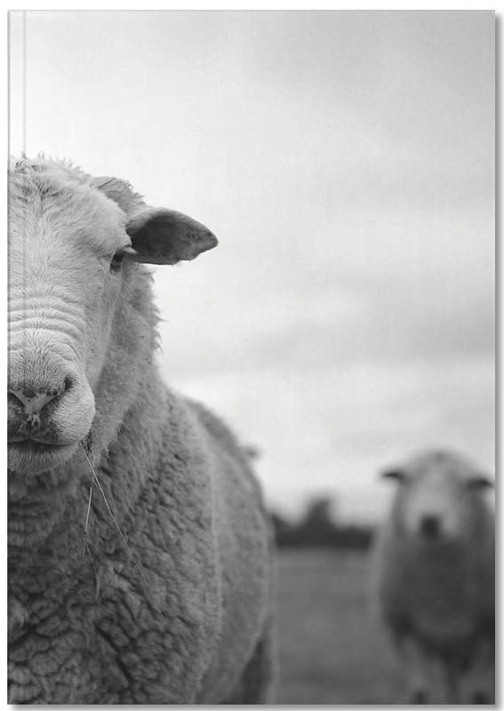 The Sheep Notebook
