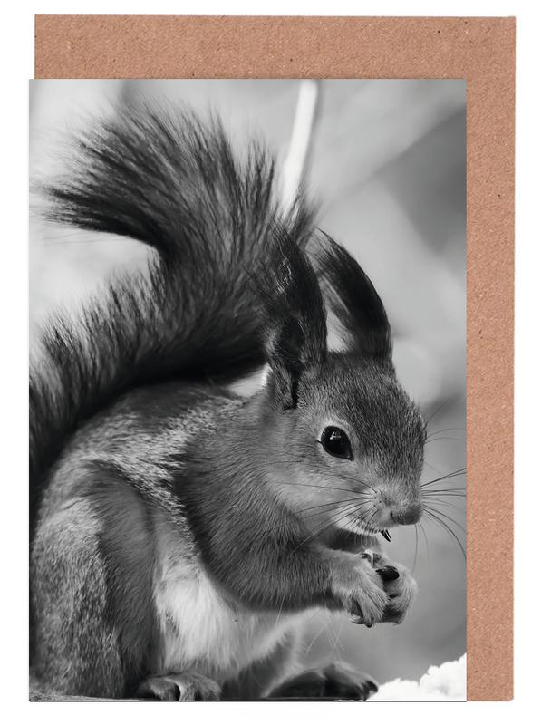 The Squirrel Greeting Card Set