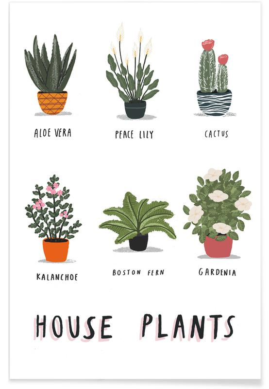 Bladeren en planten, House Plants poster