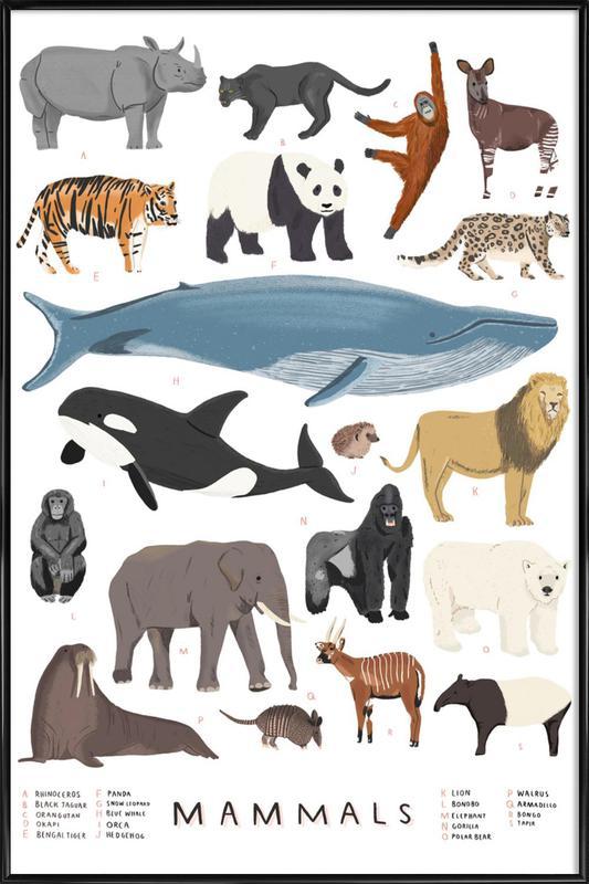Mammals Poster i standardram