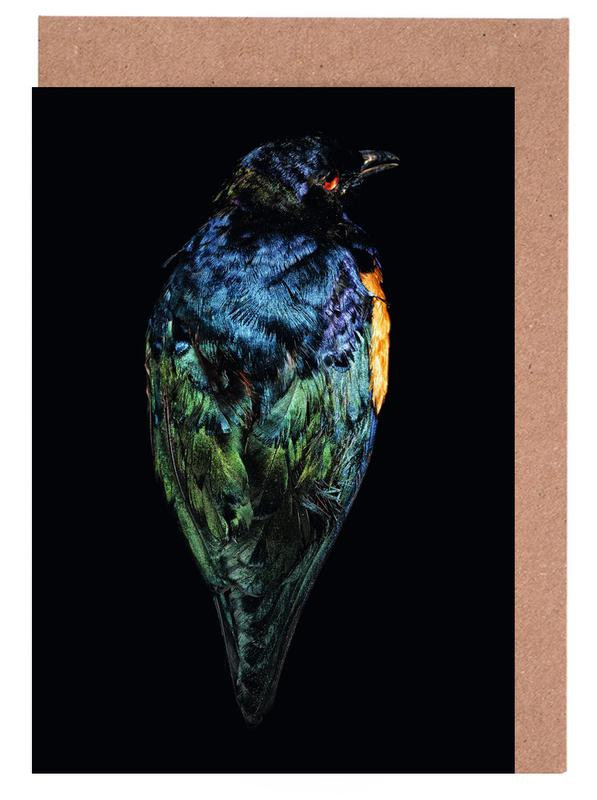 Birds Everywhere 11 -Grußkarten-Set
