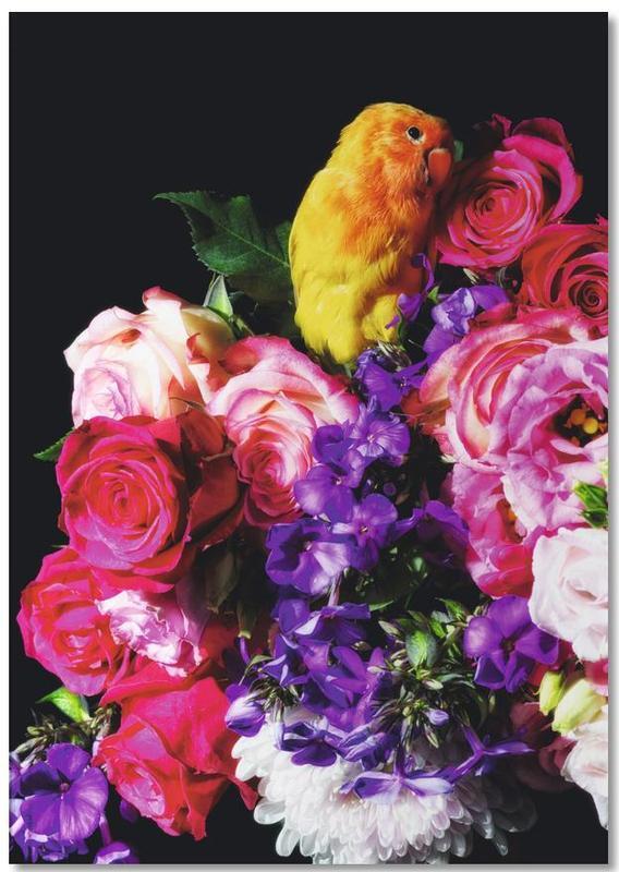 Roses, Parrots, Birds Everywhere 18 Notebook