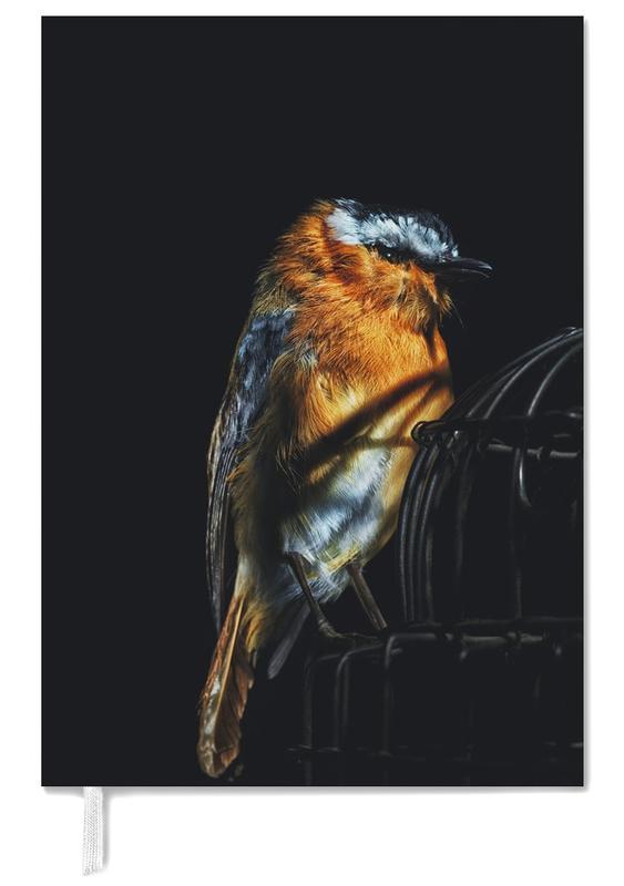 Birds Everywhere 2 -Terminplaner