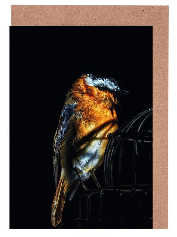 Birds Everywhere 2 Greeting Card Set