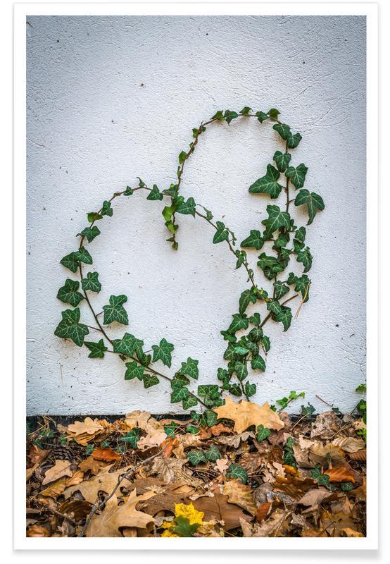 Leaves & Plants, Efeu Herz Poster
