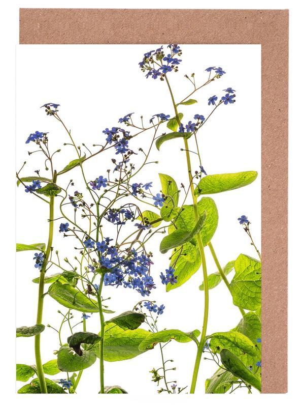 Flora - Vergissmeinnicht Greeting Card Set