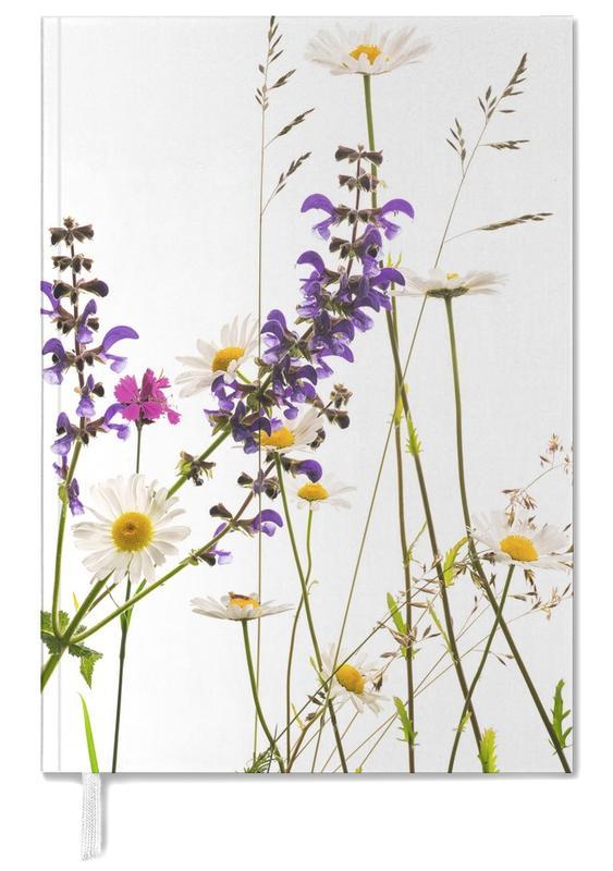 Flora - Margerite -Terminplaner