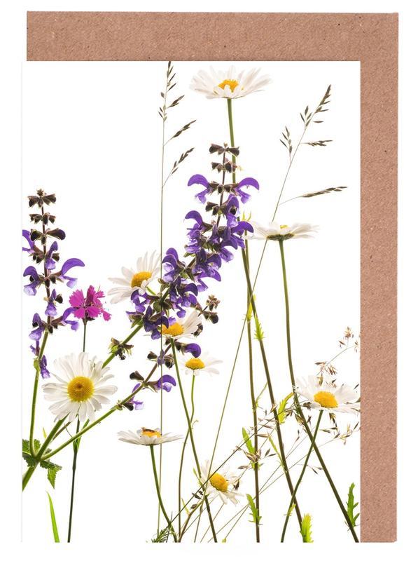 Flora - Margerite Greeting Card Set